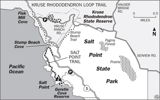 Kruse Rhododendron Preserve map