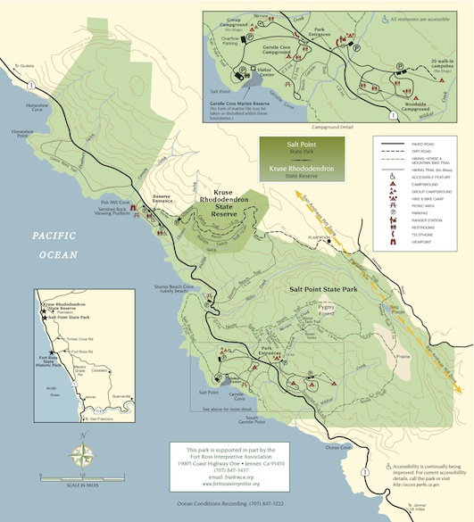 Salt Point State Park and Kruse Rhododendron Preserve