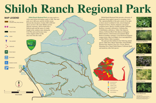 Shiloh Ranch Regional Park map